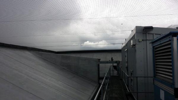bird-netting-london